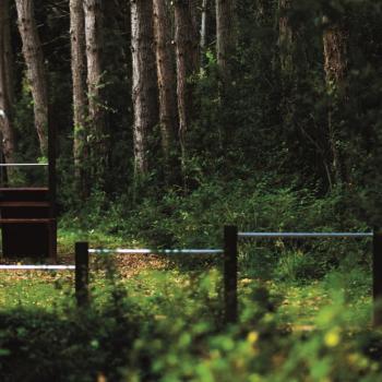 Trim punkt u park šumi Zlatni rt