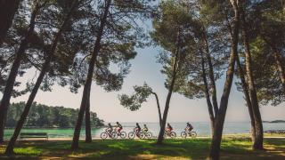 Bike & Trail