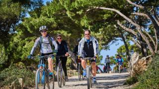 Weekend Bike and Gourmet Tour: spring